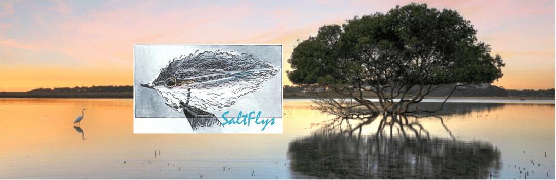 SaltFlys Header
